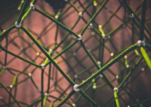 Network Mapping - Digital Transformation - ElevateX